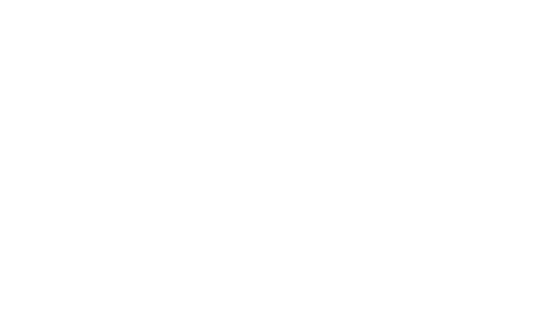 Alza Immobilien